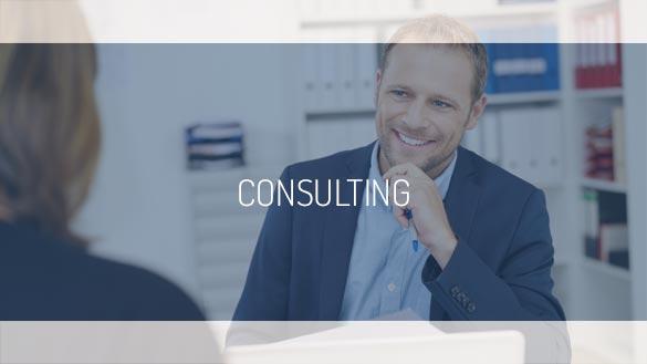 TEHAG Consulting