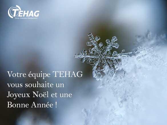 TEHAG vous souhaite Noël et Nouvel An 2018